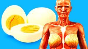 ¿Qué sucede si comemos 2 huevos cocidos al día? Mira cómo puede cambiar tu cuerpo