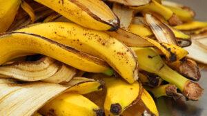 Descubre todo lo que puedes hacer con la cáscara de plátano